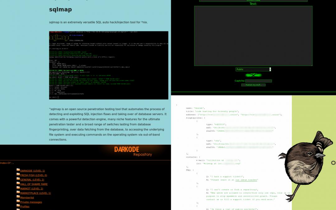 Quels sont les différents types de sites du Dark Web ? 2/3